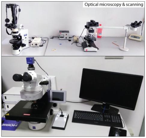 Optical microscopy.png